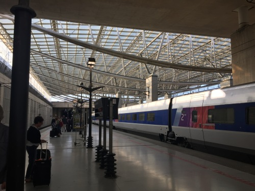 The TGV, France's bullet train, has a stop conveniently located in the Charles de Gaulle airport.