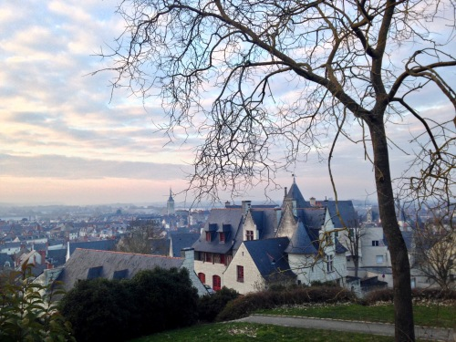 A beautiful view of Saumur's Centre Ville from a park near the town chateau.