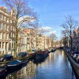 Amsterdam gem: Frenzi's organic breakfast