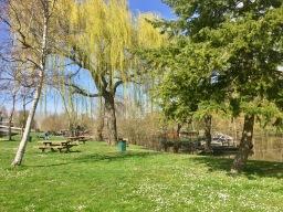 Weekend picnics welcome springtime